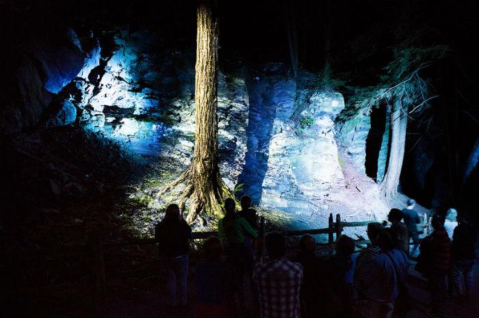 Проект пришёлся по душе посетителям квебекского парка