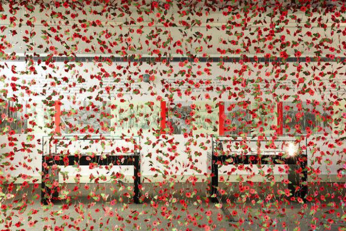 Потрясающая цветочная композиция из маков в память о жертвах Первой и Второй мировых войн