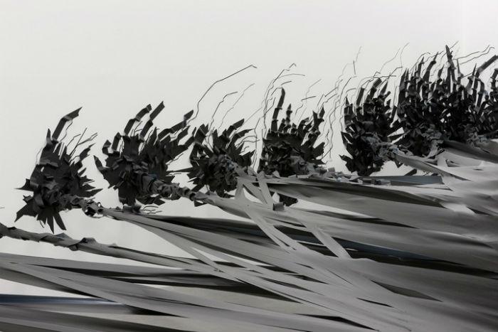 Своего рода трехмерная графика, которой занимается Моника – интереснейший художественный эксперимент