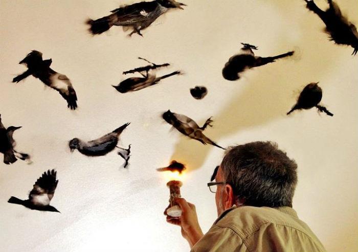 Картины, написанные огнём от Стивена Спазука