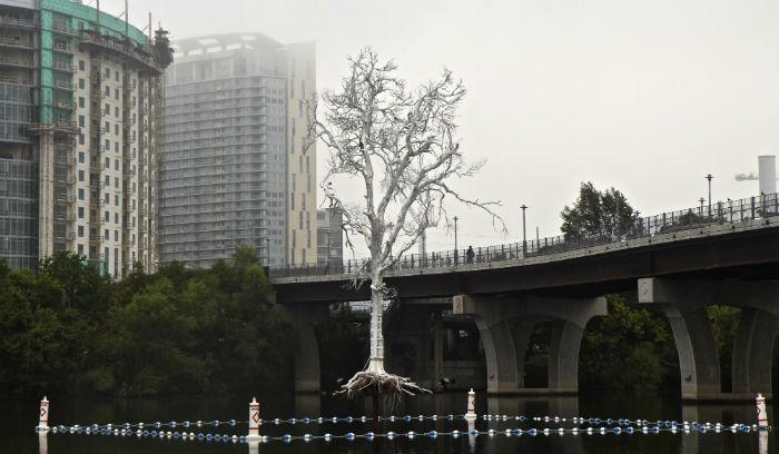 В рамках  проекта «Public Art Project» была воплощена инсталляция «THIRST», посвященная экологическим проблемам США