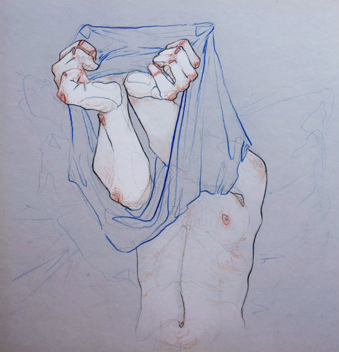 Серию «Take Off Your Clothes» («Раздевайся») художница начала четыре года назад