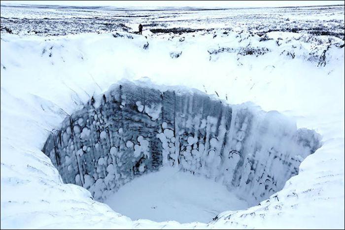 Фотографии были обнародованы несколько дней назад Российским центром освоения Арктики
