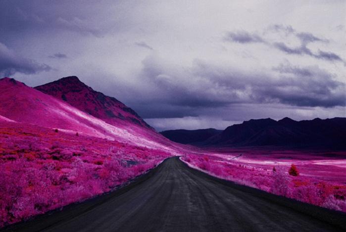 Инфракрасные снимки Арктики от фотографа Daniel Zvereff.