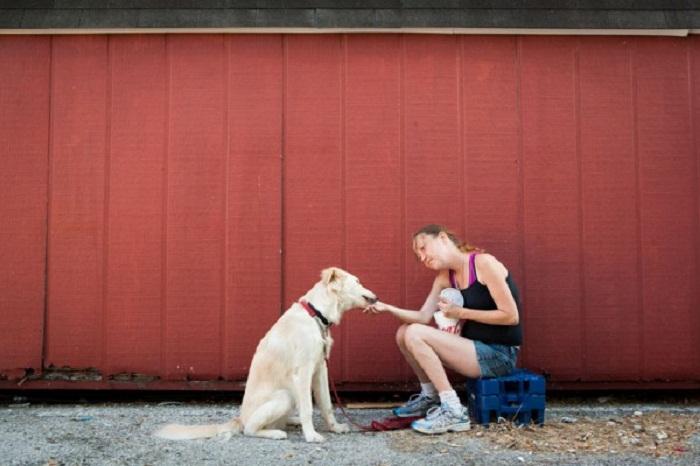 Бездомные с собаками.