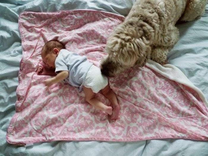 Маленькая Лулу