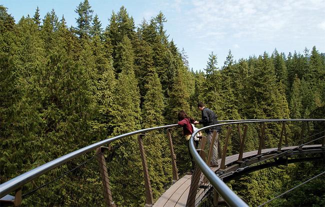 Capilano: подвесной мост в Ванкувере.