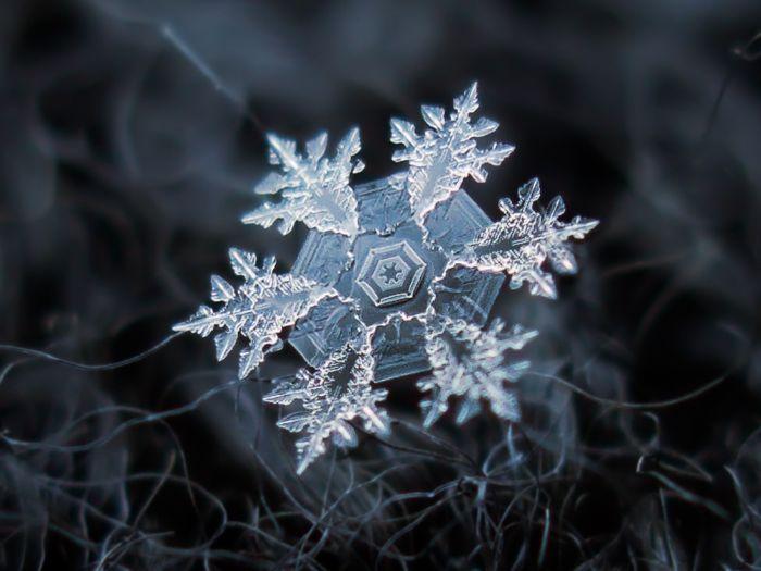 Alexey Kljatov: фотографии снежинок в режиме макросъемки