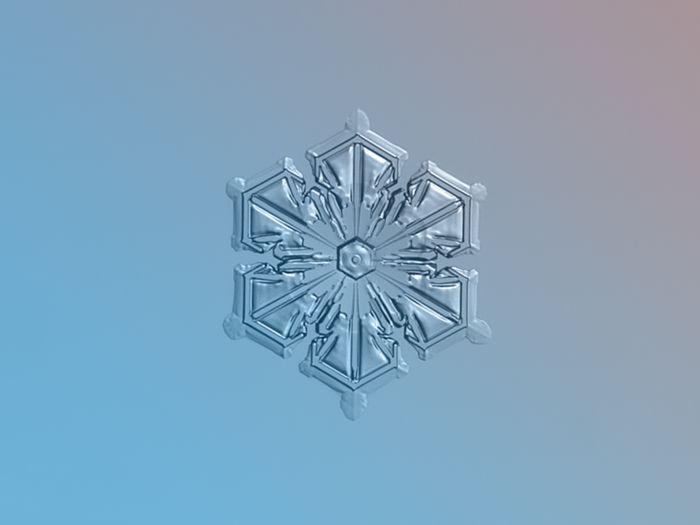 Снежинки, запечатленные в режиме макросъемки фотографом Alexey Kljatov