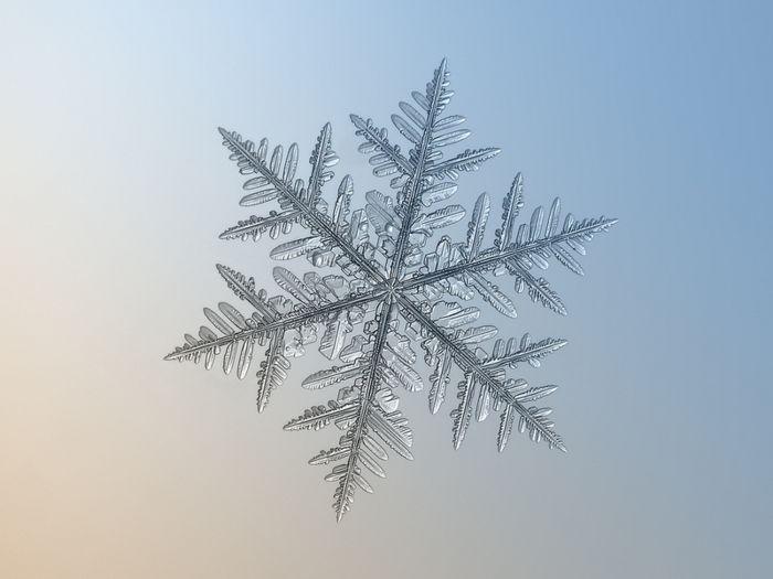 Alexey Kljatov: обычные снежинки в необычном ракурсе