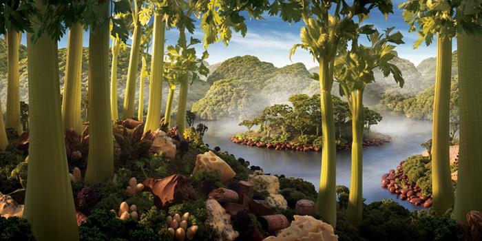 вкусный лес от Carl Warner