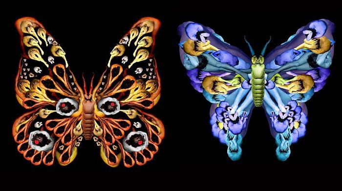 бабочки Cecelia Webber