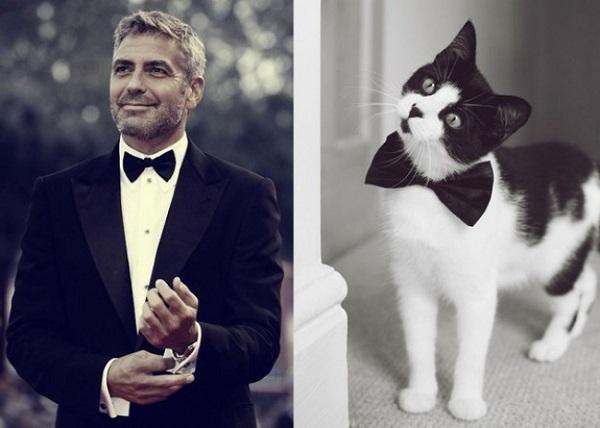Джодж Клуни.