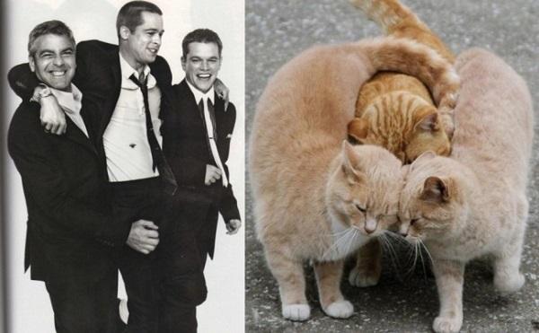 Джодж Клуни, Брэд Питт и Мэтт Дэймон.
