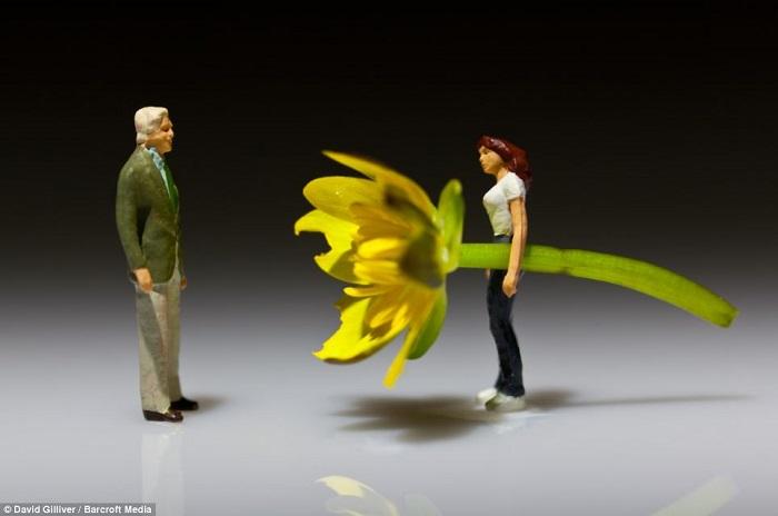 Гигантский цветок от любимого.