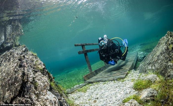 Подводная прогулка по парку