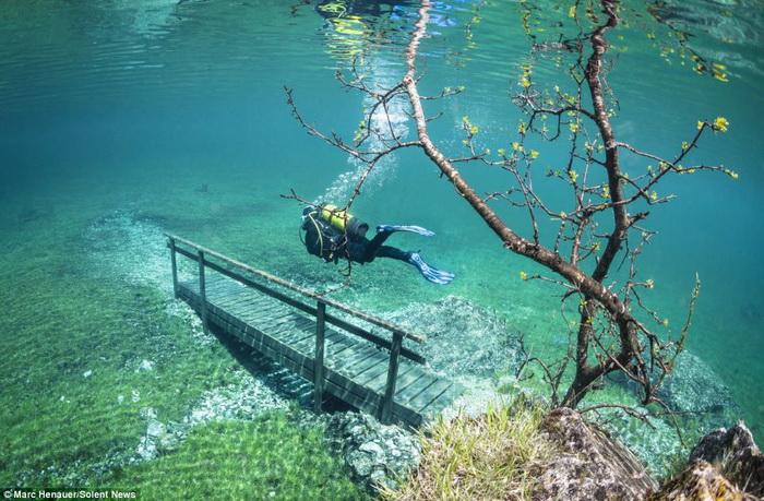 Марк Henauer: подводная прогулка по парку
