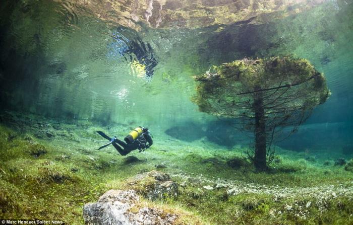 Дайвинг на дне Зеленого озера