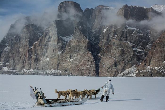 Северная Гренландия от фотографа Ciril Jazbec