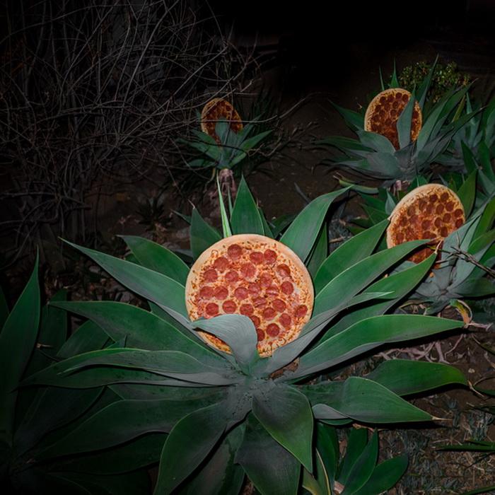 Пицца на фотографиях Jonpaul Douglass.