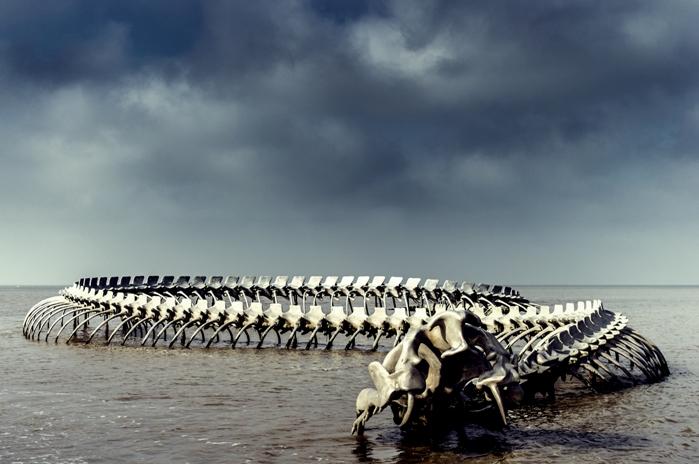 Скелет морского змея на берегу Loire
