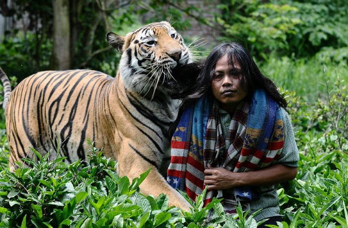 Дружба юноши с тигром.