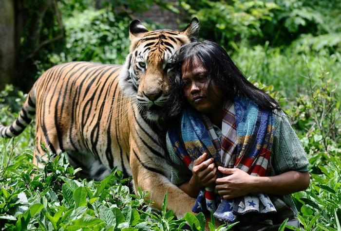 Abdullah Sholeh со своим тигром