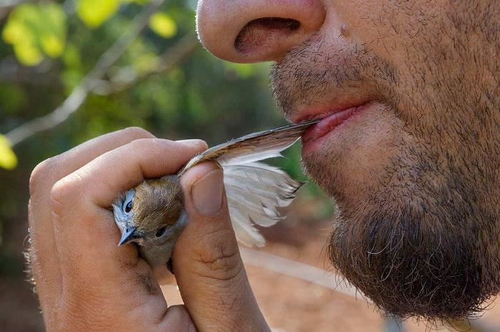 Уникальные фотографии National Geographic