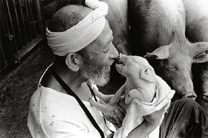 Японский фермер Otchan.