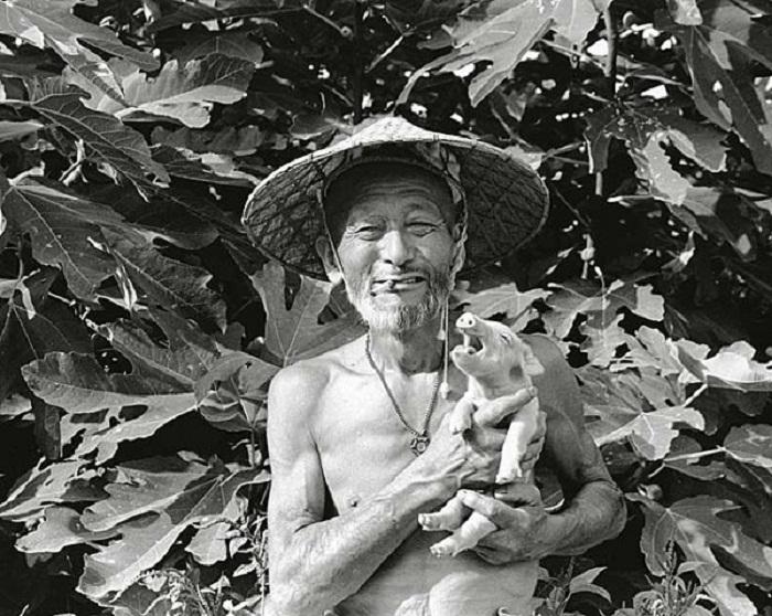 Фотосессия японского фермера со свиньями: когда работа приносит удовольствие.