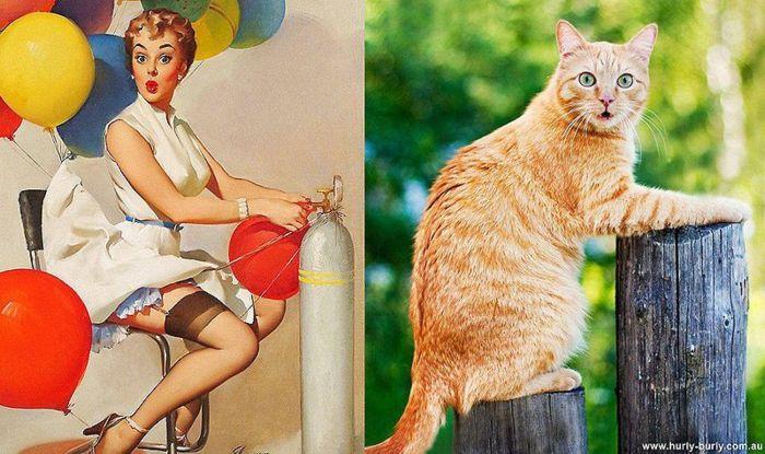 Очаровательные девушки и не менее очаровательные кошки в стиле pin-up