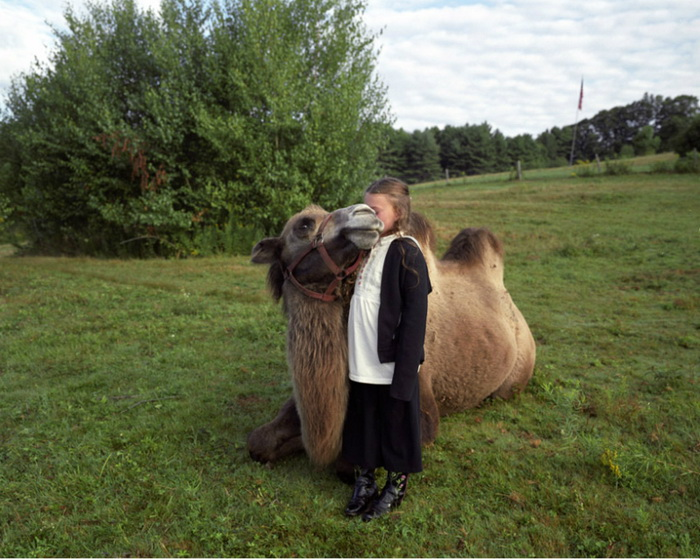 Amelia and the Animals: животные и ребенок