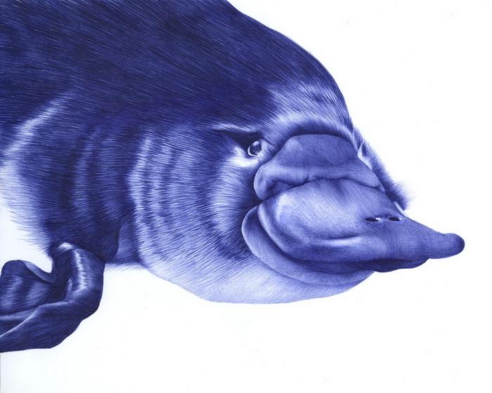Рисунки шариковой ручкой художницы Sarah Esteje