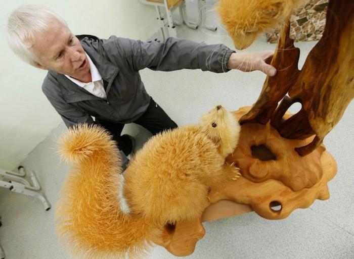 Колоритные фигуры животных из деревянных стружек от Сергея Бобкова