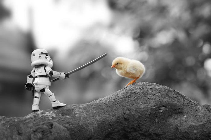 Фигурки героев Звездных войн в фотосессии Zahir Batin.