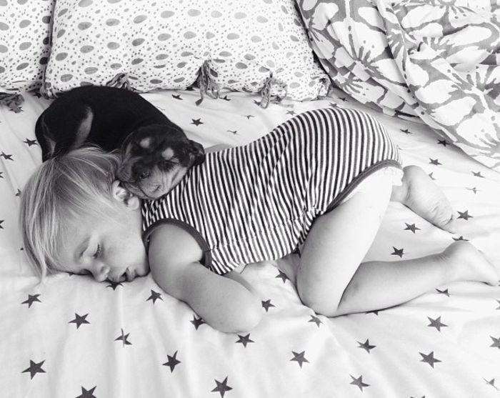 Бо и Тео: история дружбы ребенка и животного