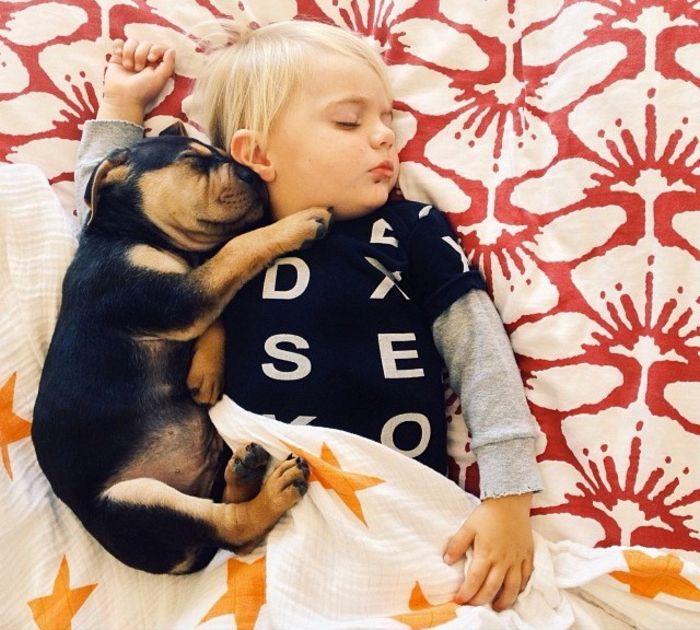 Спят усталые игрушки, Бо и Тео