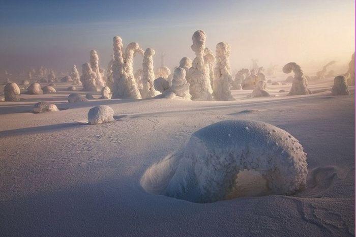 Уникальные морозные пейзажи