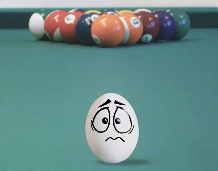 Веселые яйца бразильской художницы Vanessa Dualib