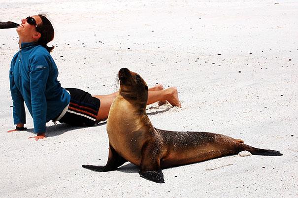 Инструктор по йоге.