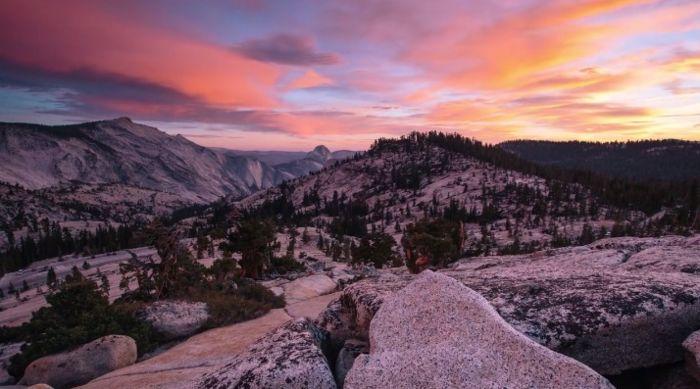 Фотографии с Yosemite National Park