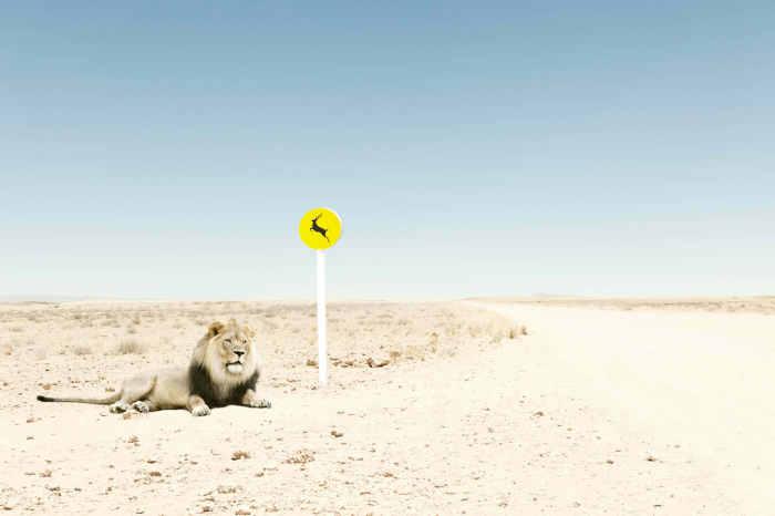 Серия юмористичных фотографий от Zack Seckler