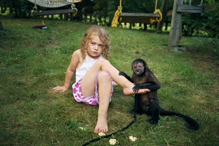 Амелия и животные