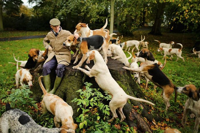 Эндрю Джерман с собаками перед началом нового охотничьего сезона