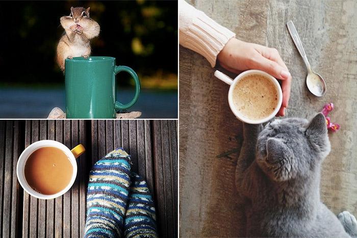 Фотографии с кофе