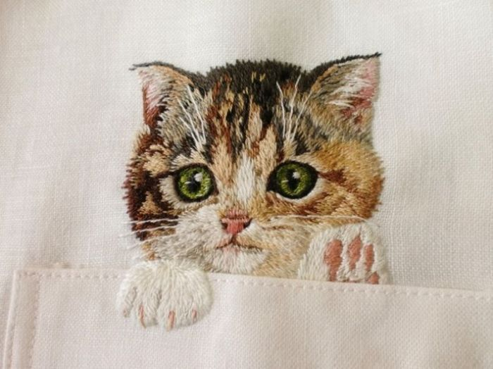 Коты на сорочке от Хироко Кубота