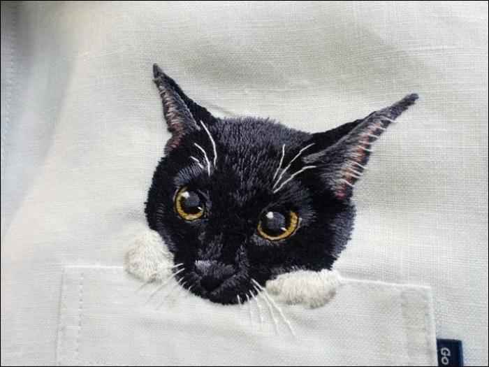 Кот в кармане против серости офисной жизни
