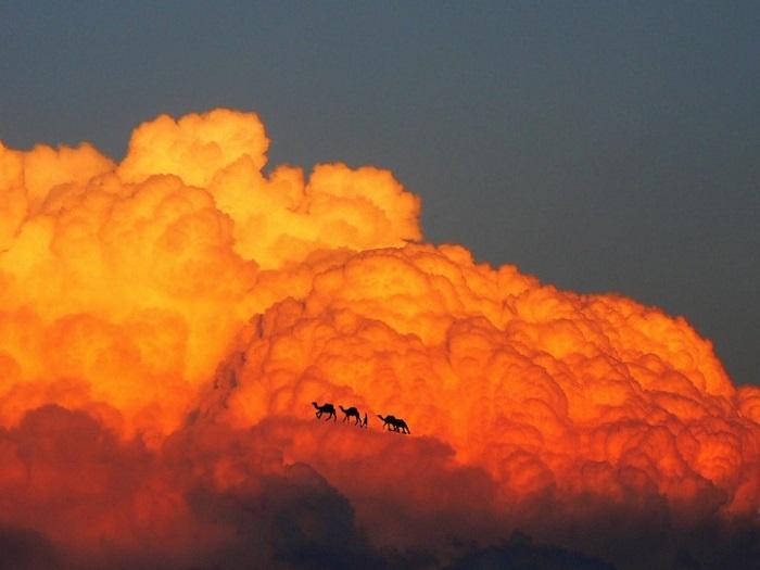 Пейзажи с облаками от Elio Pallard