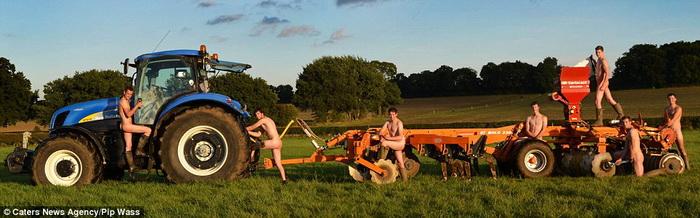 Обычная работа на ферме