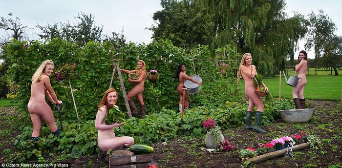 Фермерские хлопоты